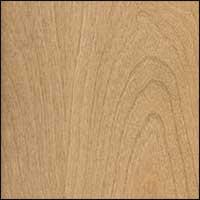 Oiled Birch #10