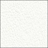 CD100 White