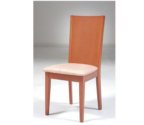 Modern Dining Chair SPN-Donin-34