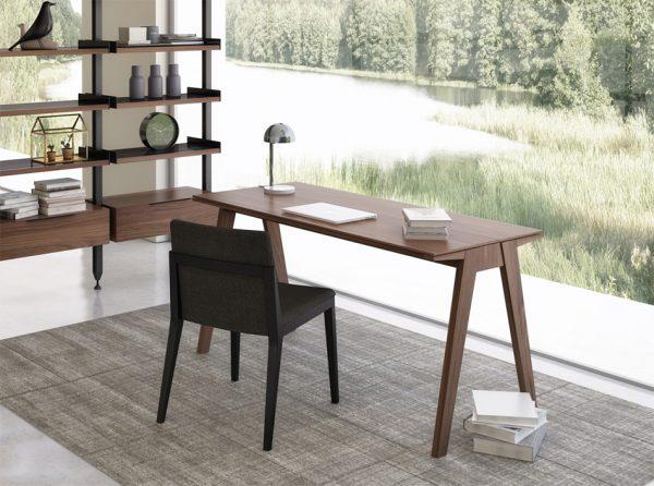Huppe Howard Modern Home Office Desk